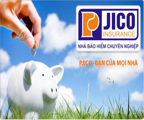 bảo hiểm pjico,bao hiem petrolimex, mua bảo hiểm petrolimex,tổng công ty cổ phần bảo hiểm petrolimex,công ty bảo hiểm pjico