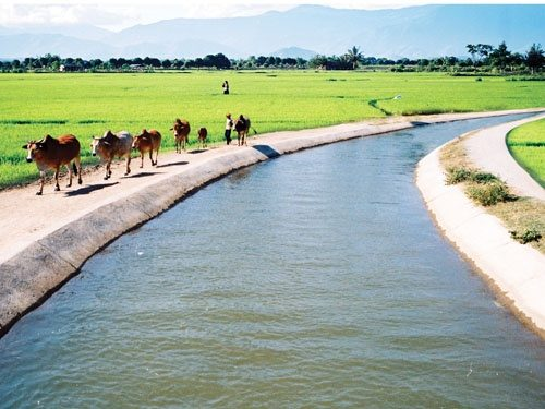 Bảo hiểm công trình xây dựng thủy lợi